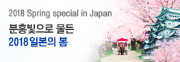 2018 일본 벚꽃여행