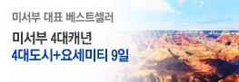 미서부 단독 9일